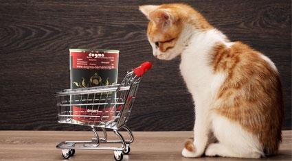 BARF Dosen auch für Katzen geeignet