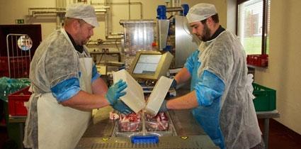 Fleischerei für Hunde - Handarbeit
