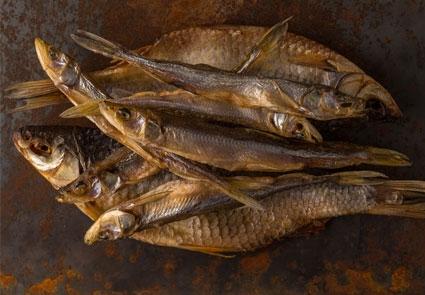 BARF Trockenfleisch Fisch